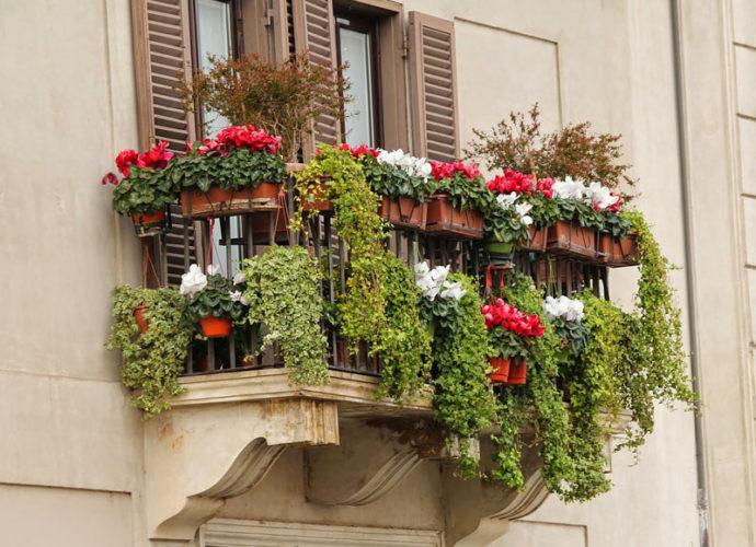 Balcone-fiorito-copertina