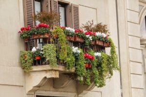Balcone fiorito - Foto di Gabor Jeszenszky da Pixabay