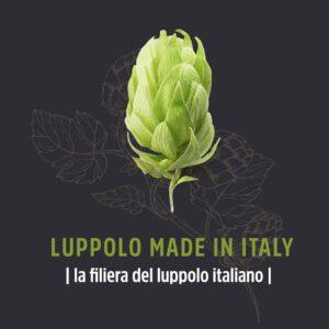 Luppolo Made in Italy_filiera del luppolo_grafica-in