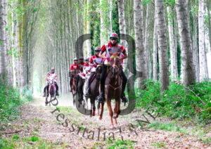 Longines FEI Endurance World Championship-2