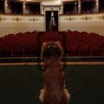 Teatro_Gubbio-cop