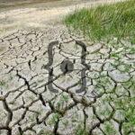 cambiamenti climatici-cop