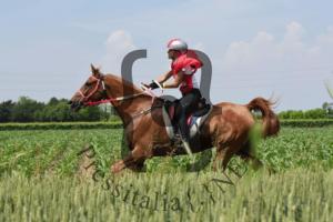 Foto-endurance-Costanza-Laliscia-ok-in