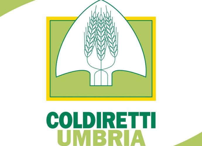 Coldiretti-Umbria-cop