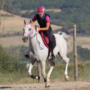 Costanza-Laliscia-in